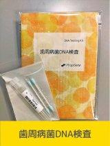 歯周病菌・遺伝子(DNA)検査[送料無料!!]